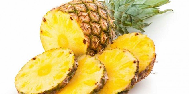 PIÑA TROPICAL (Ananas sativus)